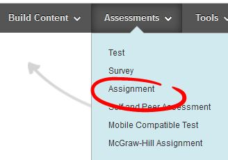 creating_an_assignment1